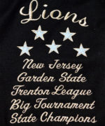 18 LIONS